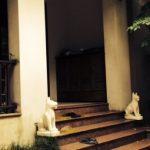 Chó đá – linh vật phong thủy trấn trạch hiệu quả cho ngôi nhà của bạn!